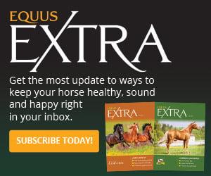 EQUUS Extra