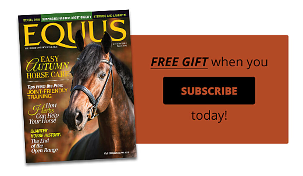 Subscribe to EQUUS today!