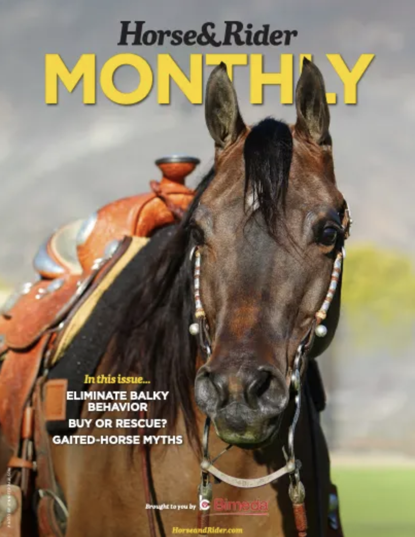 Horse&Rider Monthly